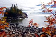 Autium Days By Sandra Updyke