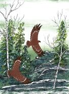 Brown Birds by Francis Esquega Lake Superior Store