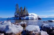 March Beauty by Sandra Updyke