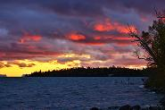 Fire in the Sky by Billie Stechyshyn