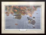 Autumn Rain Wood Ducks by David Martin