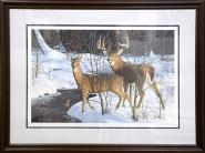 Doe and Buck by Bruce Miller